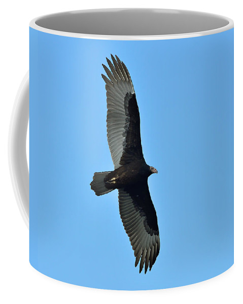 Turkey Vulture Coffee Mug featuring the photograph Turkish by Tony Beck