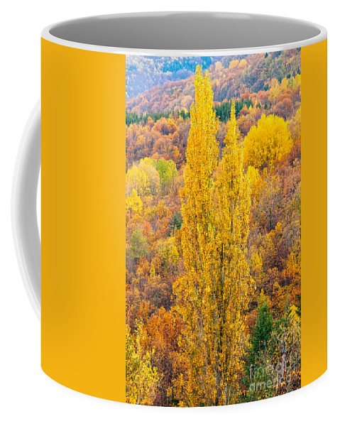 Awesome Coffee Mug featuring the photograph Tuscany Landscape by Luciano Mortula