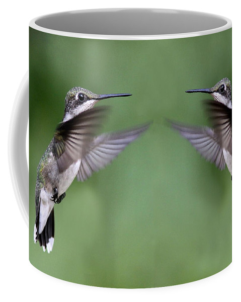Birds Coffee Mug featuring the photograph Twins For Sure by Travis Truelove