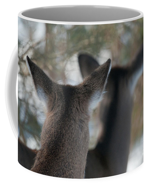 Bronstein Coffee Mug featuring the photograph Two Heads Are Better Than One by Sandra Bronstein
