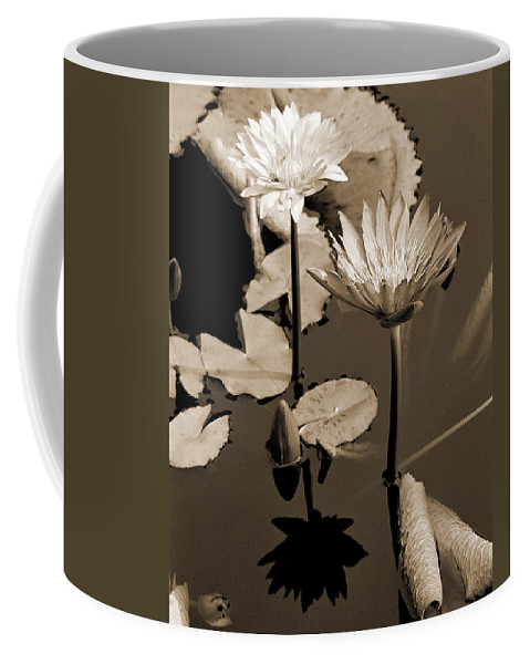 Waterlilies Coffee Mug featuring the photograph Two Waterlilies Sepia by Greg Matchick