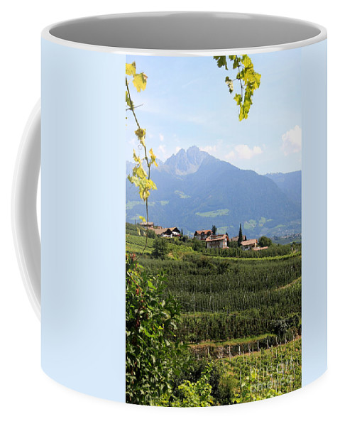 Tyrolean Alps Coffee Mug featuring the photograph Tyrolean Alps And Vineyard by Christiane Schulze Art And Photography