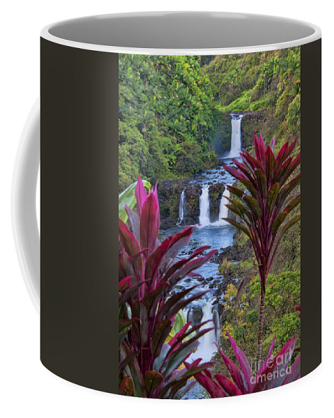 Umauma Falls Coffee Mug featuring the photograph Umauma Falls Big Island Hawaii by Gary Beeler