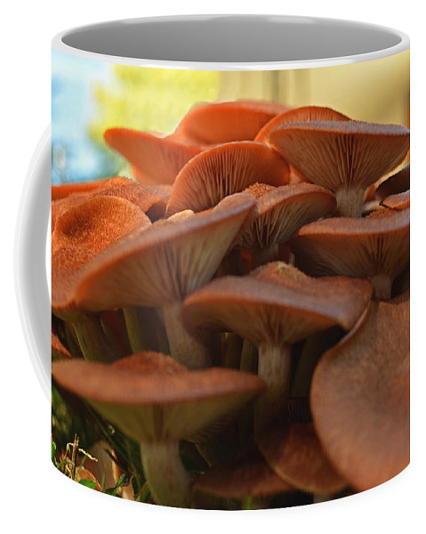 Nature Coffee Mug featuring the photograph Under The Mushroom Mound by Debbie Portwood