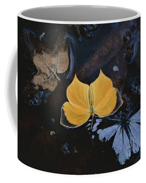 Horizontal Coffee Mug featuring the photograph Untitled by Annie Griffiths