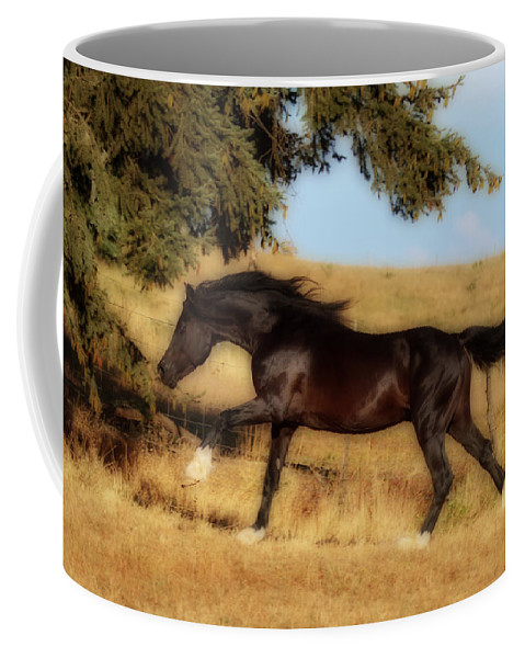 Uphilll Gallop Coffee Mug featuring the photograph Uphilll Gallop by Wes and Dotty Weber