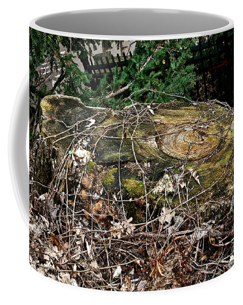 Tree Trunk Coffee Mug featuring the photograph Urban Decay by Susan Herber