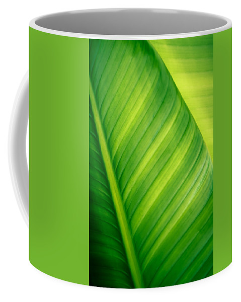 Abstract Coffee Mug featuring the photograph Vibrant Green Leaf by Joe Carini - Printscapes