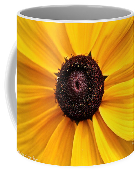 Plant Coffee Mug featuring the photograph Vibrant Summer by Susan Herber