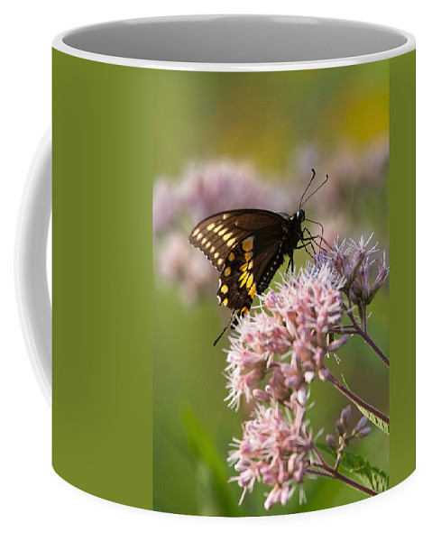 Butterfly Coffee Mug featuring the photograph Victuals by Dale Kincaid
