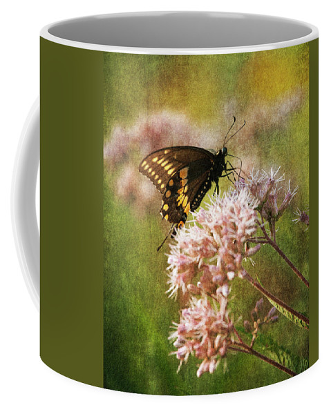 Butterfly Coffee Mug featuring the photograph Victuals II by Dale Kincaid