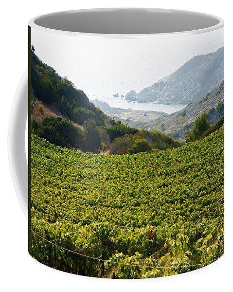 View From Catalina Island Coffee Mug featuring the photograph View From Catalina Island by Bill Cannon