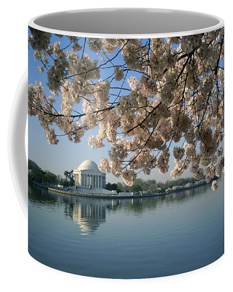 North America Coffee Mug featuring the photograph View Of Cherry Blossoms by Medford Taylor