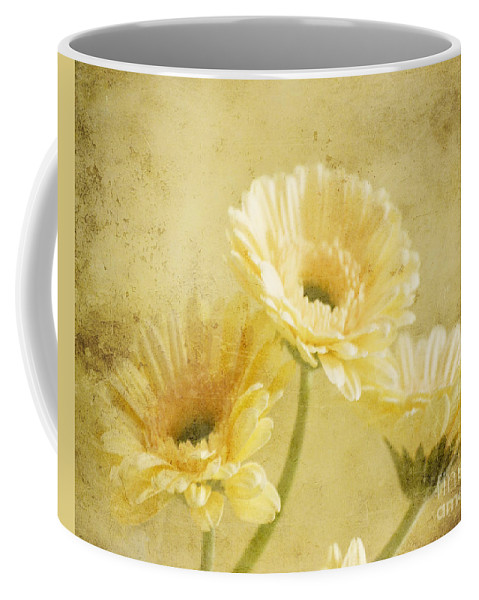 Gerber Coffee Mug featuring the photograph Vintage Vanilla by Traci Cottingham
