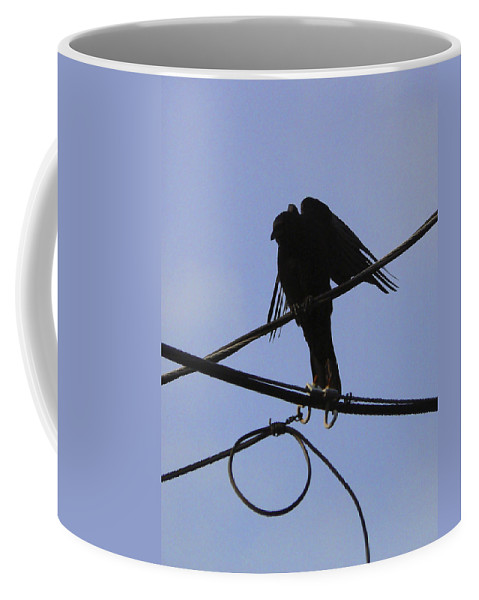 Crow Coffee Mug featuring the photograph Waiting At A Crossroads by Pamela Patch