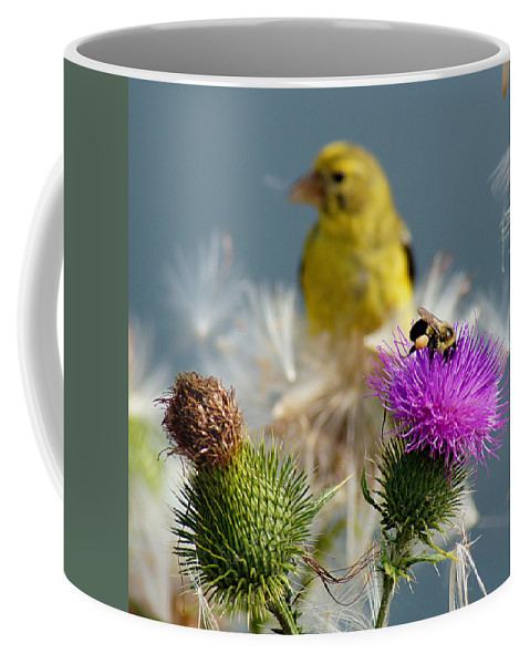 Bird Coffee Mug featuring the photograph Watchful Eye - Cropped by Bill Pevlor