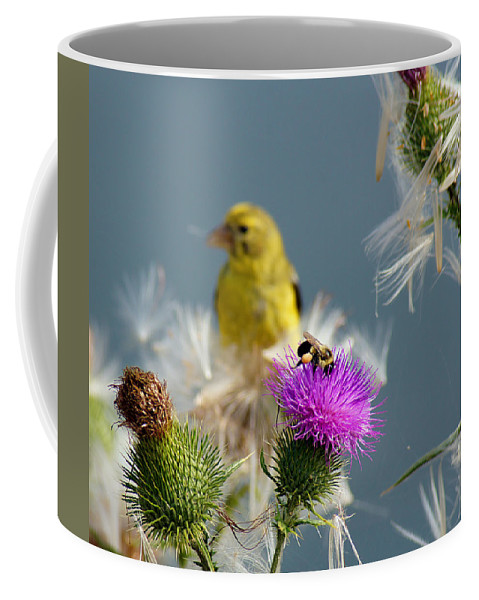 Bird Coffee Mug featuring the photograph Watchful Eye by Bill Pevlor