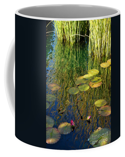 Water Coffee Mug featuring the photograph Water Lilies Reflection by Nancy Mueller
