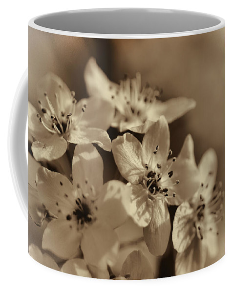 Pyrus Calleryana Coffee Mug featuring the photograph Waves Of Light In Sepia by Kathy Clark