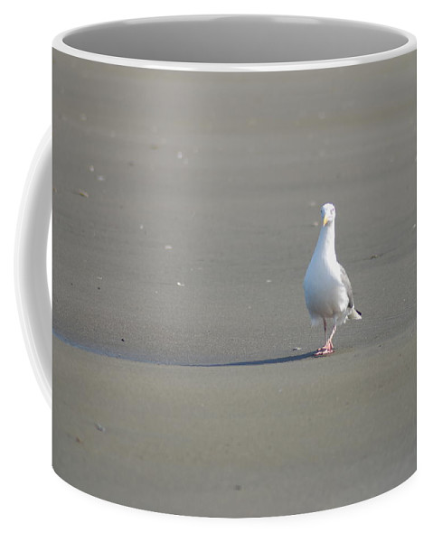 Gull Coffee Mug featuring the photograph What Are You Looking At by Michael Merry