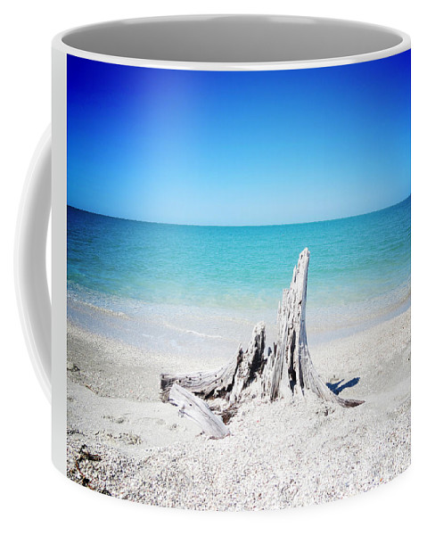 Florida Coffee Mug featuring the photograph What Remains - Altered by Chris Andruskiewicz