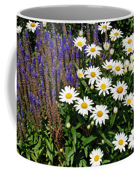 Daisy Coffee Mug featuring the photograph White Daisies by Aimee L Maher ALM GALLERY