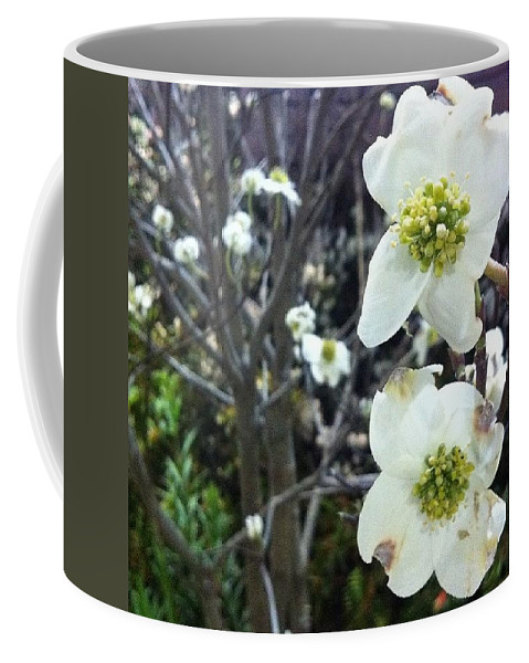 Nofilter Coffee Mug featuring the photograph White Flowers by Katie Cupcakes