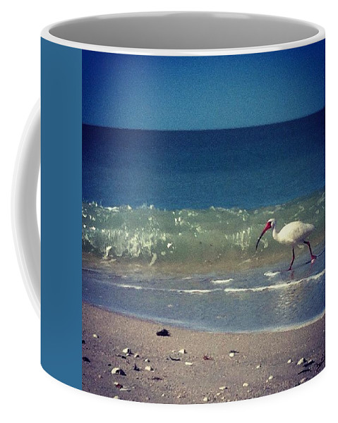 Beautiful Coffee Mug featuring the photograph White Ibis by Katie Cupcakes
