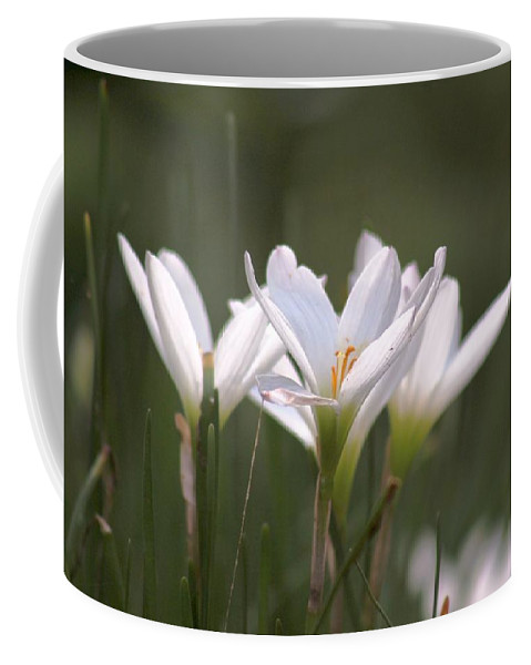 White Lily Coffee Mug featuring the photograph White Lily - Symbol Of Purity by Ramabhadran Thirupattur