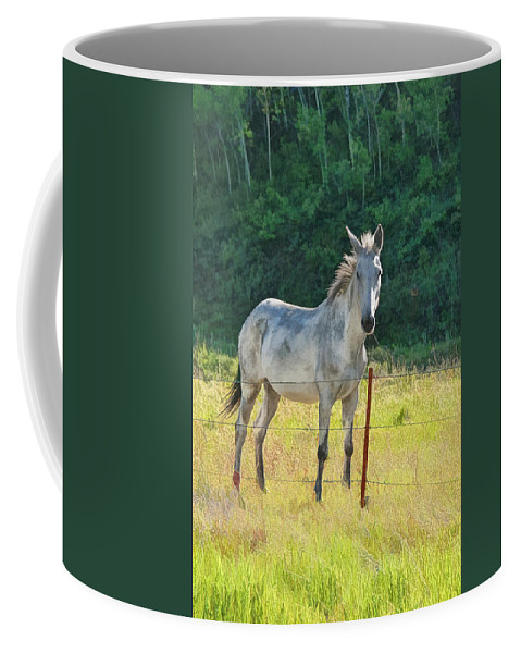 Art Coffee Mug featuring the photograph White Mule No.5007 by Randall Nyhof