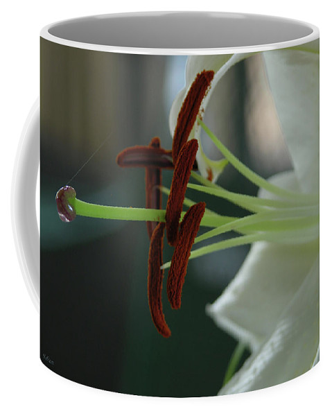 Photography Coffee Mug featuring the photograph White Tiger Lily II by Julianne Felton