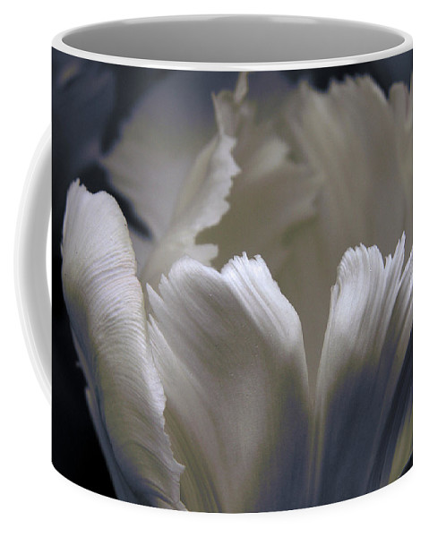 Tulip Coffee Mug featuring the photograph White Tulip by Nancy Griswold