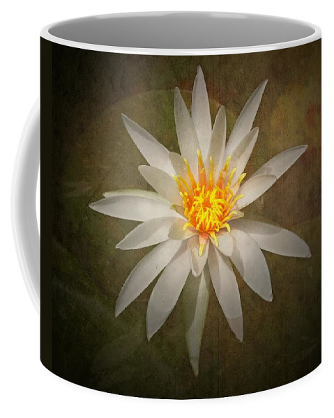 Lily Coffee Mug featuring the photograph White Water Lily by Rudy Umans