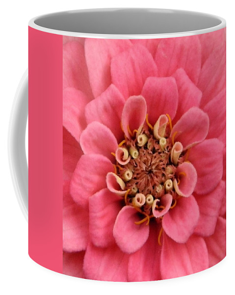 Zinnia Coffee Mug featuring the photograph Whole Lotta Pink by Chris Berry