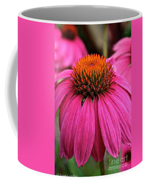 Plant Coffee Mug featuring the photograph Wild Berry Purple Cone Flower by Susan Herber