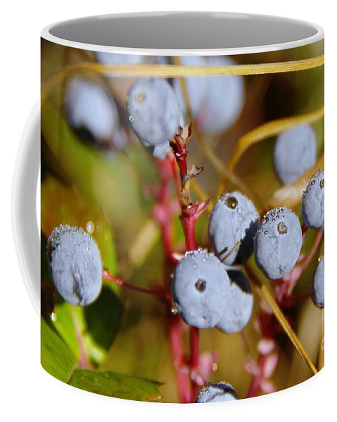 Waterd Drops Coffee Mug featuring the photograph Wild Blue Berries With Water Drops by Jeff Swan