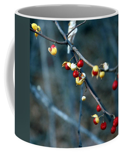 Usa Coffee Mug featuring the photograph Wild Red Berries Out Of The Shell by LeeAnn McLaneGoetz McLaneGoetzStudioLLCcom