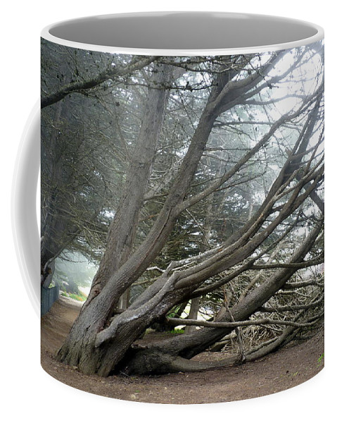 Tree Coffee Mug featuring the photograph Windswept by Carla Parris