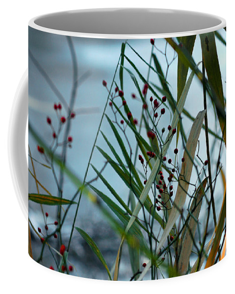 Berries Coffee Mug featuring the photograph Winter And Fall Fight by LeeAnn McLaneGoetz McLaneGoetzStudioLLCcom
