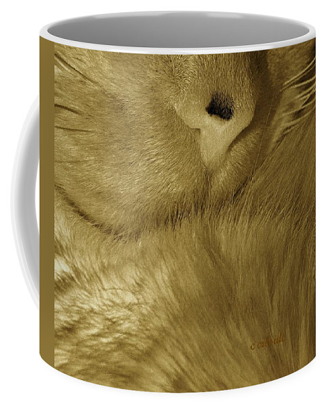 Animals Coffee Mug featuring the photograph Winter Coat by Chris Berry