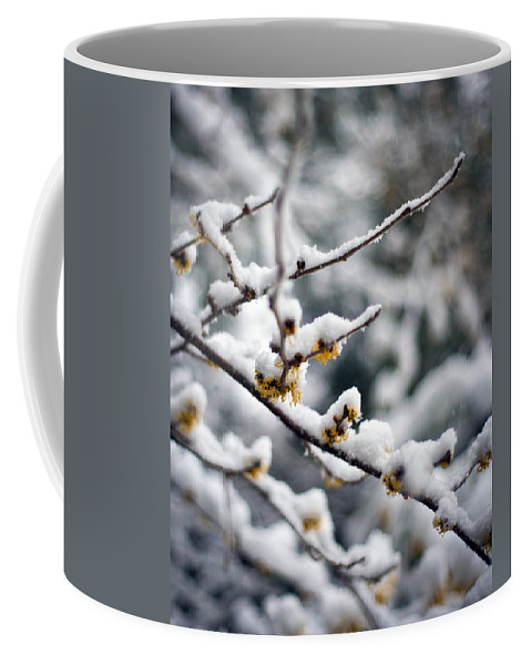 Winter Coffee Mug featuring the photograph Winter Fleurs by Mike Reid