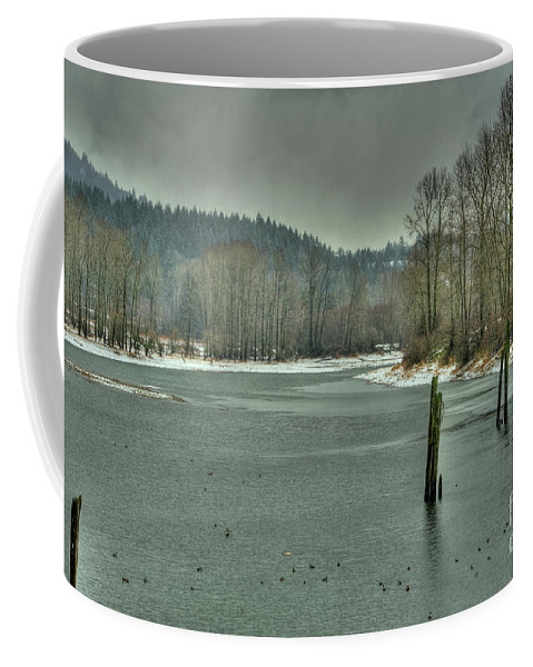 Nicomen Slough Coffee Mug featuring the photograph Winter by Rod Wiens