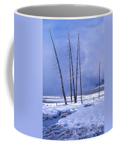 Landscape Coffee Mug featuring the photograph Winter by Sandra Bronstein
