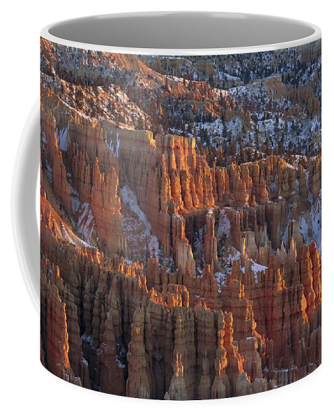 North America Coffee Mug featuring the photograph Winter View Of Bryce Canyon National by Norbert Rosing