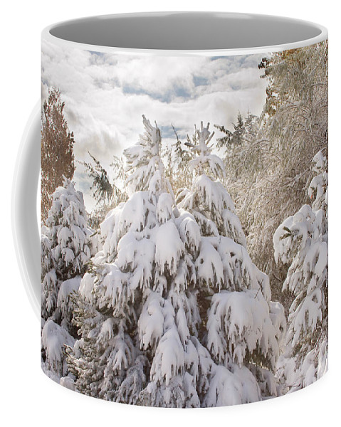 Winter Coffee Mug featuring the photograph Winter Wonderland by James BO Insogna