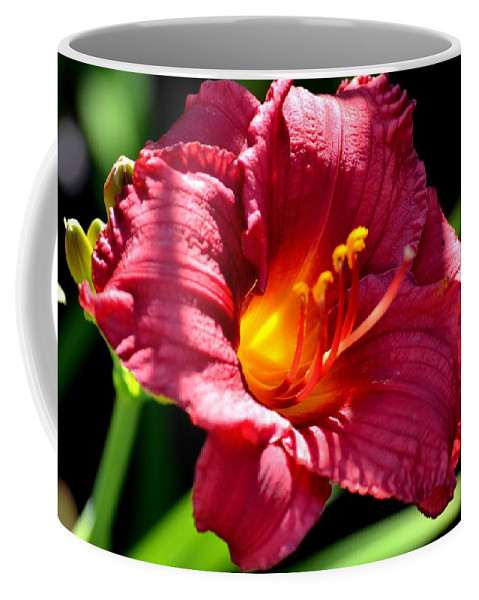 Fingers Coffee Mug featuring the photograph With The Finger Of God by Maria Urso