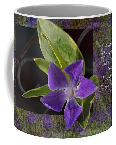 Botanical Coffee Mug featuring the photograph Wonderful Works by Debbie Portwood