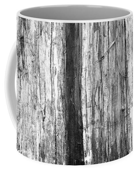Wood Coffee Mug featuring the photograph Wood Texture by Gaspar Avila