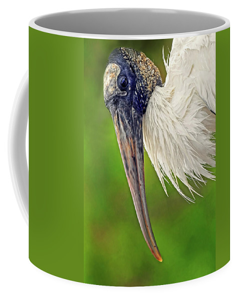 Woodstork Coffee Mug featuring the photograph Woodstork Portrait by Dave Mills