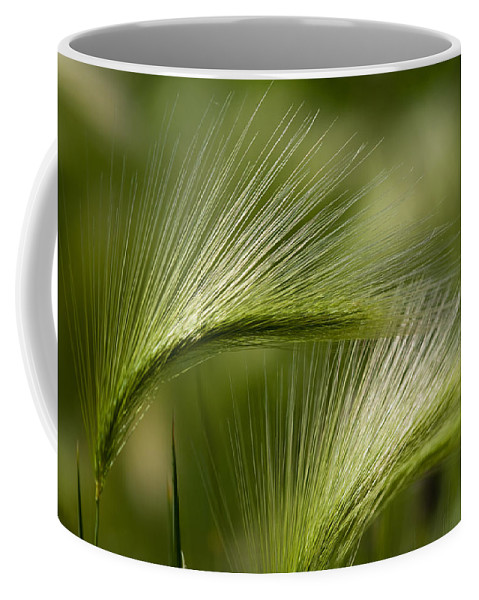 Western Coffee Mug featuring the photograph Wyoming Grassess by Rich Franco